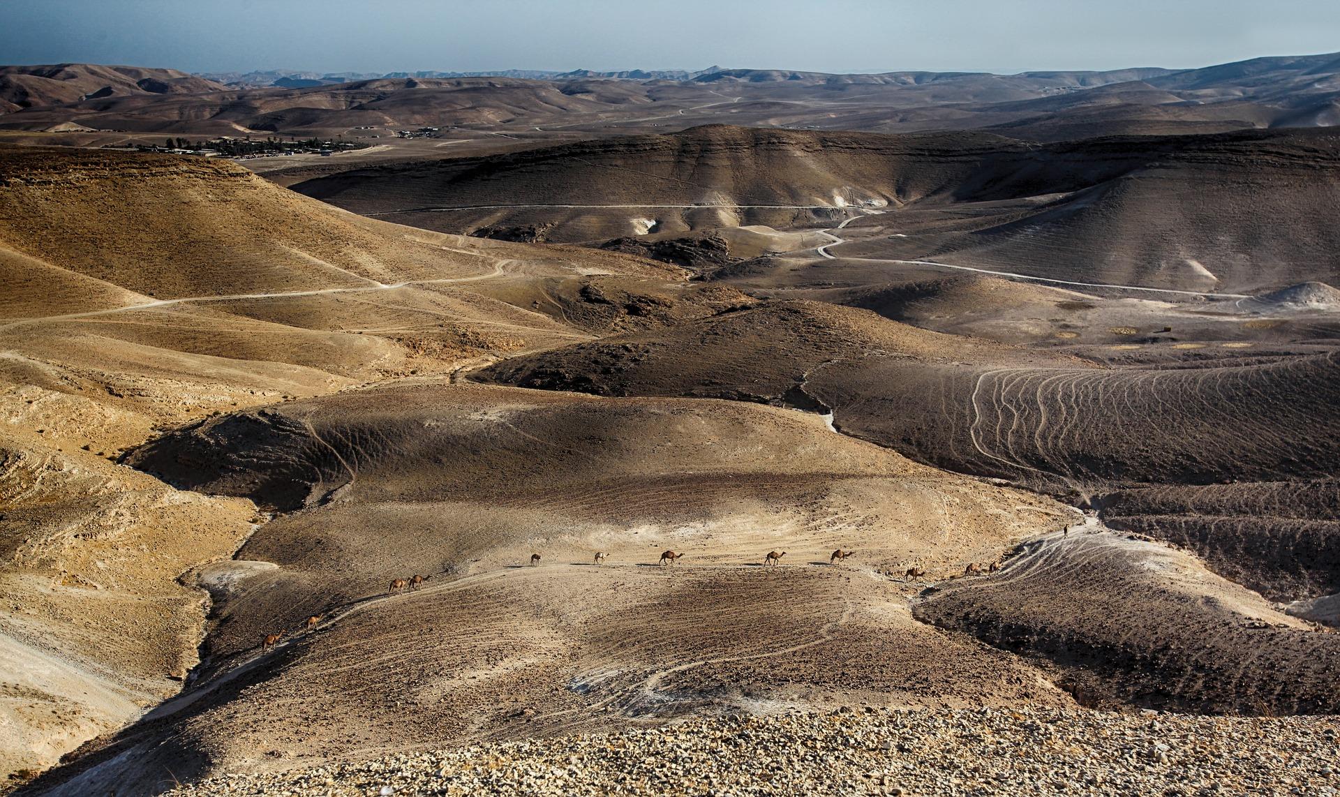 האזורים בישראל שחייבים לטפל בהם